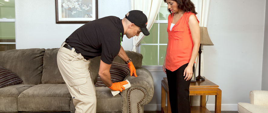 Portsmouth, OH carpet upholstery cleaning